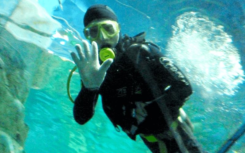 ヴィンパール水族館 スタッフ