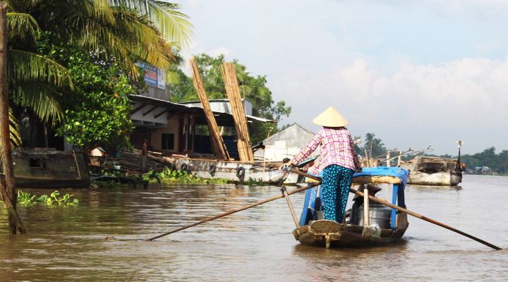 ベトナムのメコンデルタ風景