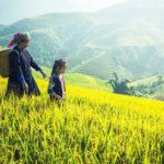 現地日系旅行会社が紹介するサパの楽しみ方 <ファンシーパン山にロープウェイで登頂するには>