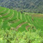 ベトナムの少数民族の土地『サパ』
