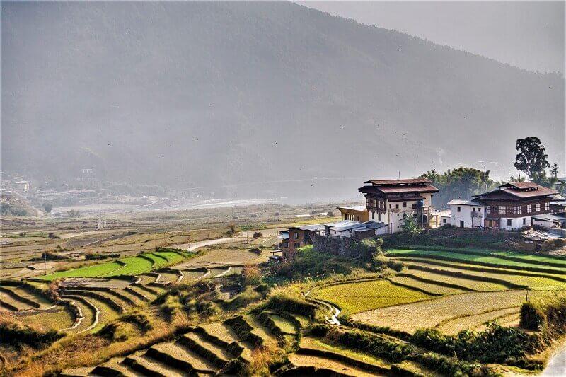ブータンの美しい棚田風景